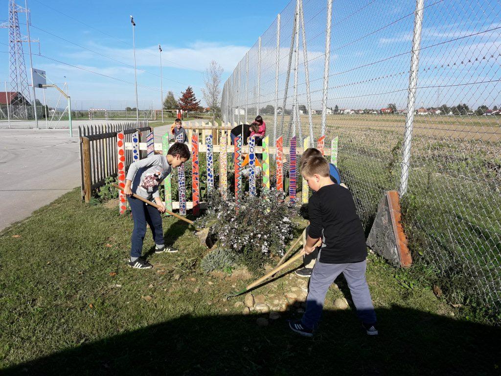 Mladi vrtnarji na OŠ Cirkovce:  DELA NE ZMANJKA NITI POZIMI